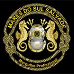 Mares do Sul Salvage